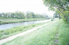 下鴨泉川町